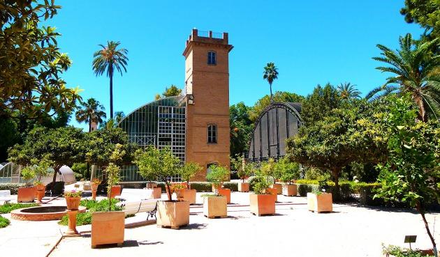 Reportaje fotogr fico del jard n bot nico de valencia por for Jardines de tabarca valencia